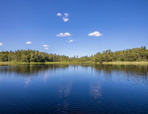 Wypoczynek nad jeziorem